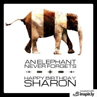 an elephant never forgets happy birthday