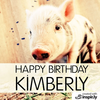 Birthday Happy Birthday pig